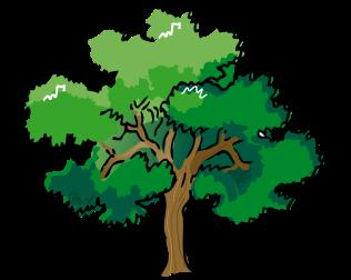 dcd6cc4cf24c464dcecf3524bfecd6e8_maple-tree-clip-art-maple-tree-clip-art-free_983-784